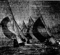 Яхты класса «Фолькбот» у поворотного знака