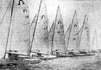 Яхты класса «Солинг» на старте