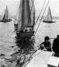 Яхты маневрируют перед стартом крейсерской гонки