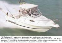 """""""22 Walkaround"""" — одна из лучших лодок для спортивного рыболовства"""