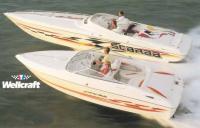 Два скоростных катера компании «Wellcraft»
