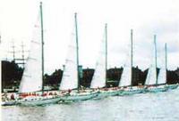 Флот на торжественном параде в Гринвиче