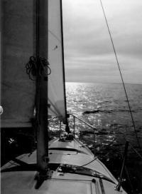 Фото с палубы яхты