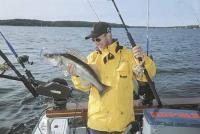 Лодка позиционируется как рыболовная