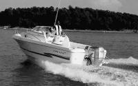 Моторная лодка с мотором Honda BF225