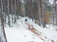 Мотовездеход в зимнем лесу