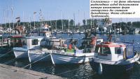 На фоне обычных рыболовных судов катера изысканных форм смотрелись бы слишком вызывающе