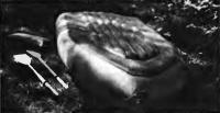 Надувное днище лодки «Язь-31»