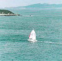 Одна из яхт-участниц гонок