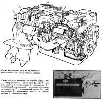 Схема компоновки дизеля «KAD42DP»
