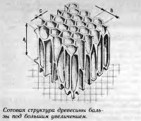 Сотовая структура древесины бальзы под большим увеличением