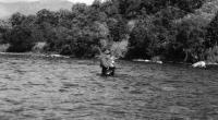 В некоторых местах глубина реки около метра