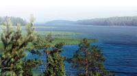 Все берега острова утопают в зелени