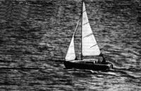 Яхта «Морской кот» под парусами