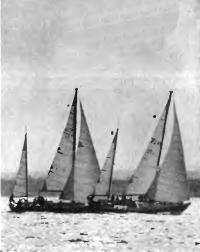 Яхты готовятся к старту