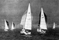 Яхты «микро»-класса на дистанции