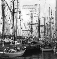 Яхты на стоянке в Петербурге
