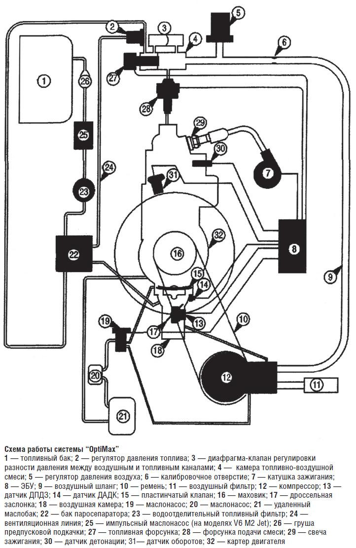 Схема работы дыхательной системы фото 627